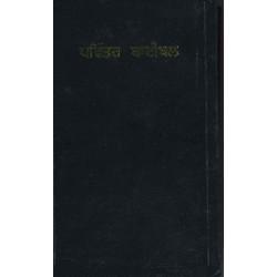 Punjabi Bible Old Version OV Hard Cover